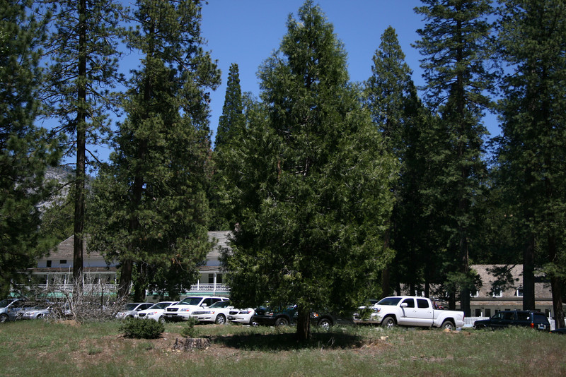 Parking at a visitor center and lodge at Wawona.