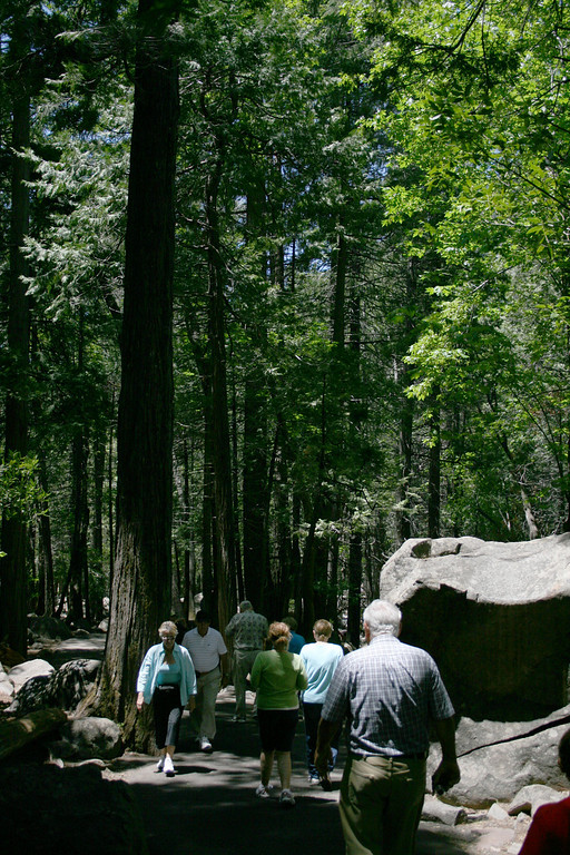 More people on the path to Bridalveil Fall