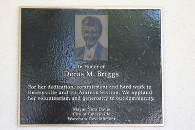Doras M Briggs