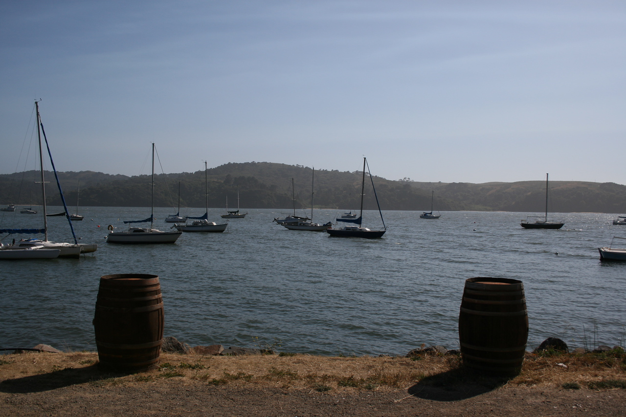 A harbor near Point Reyes National Seashore.
