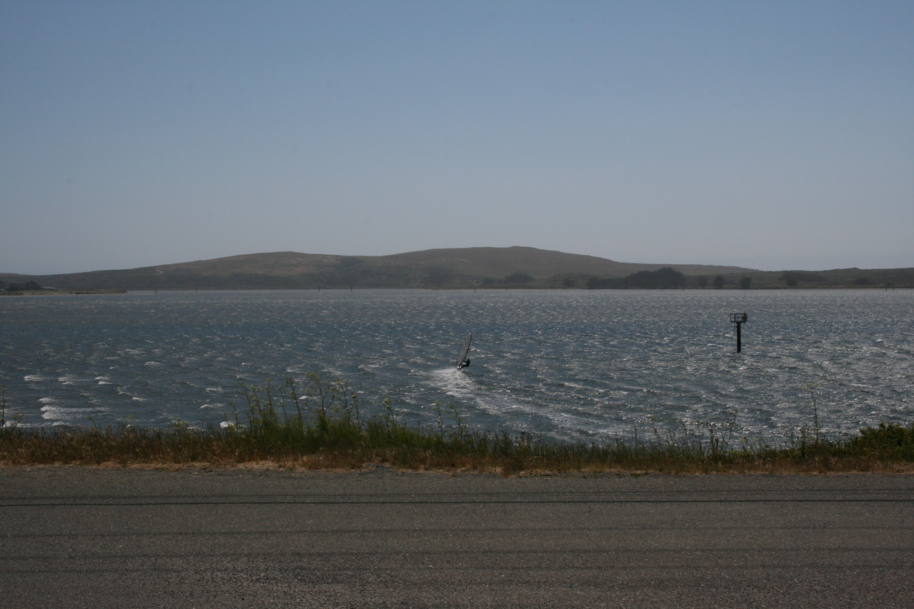 Wind surfer at Bodega Bay.