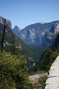 Half Dome from the roadside pull-off. Half Dome (8,842 ft.) is  among the most recognized natural features in Yosemite, its western face is a sheer cliff of Plutonic granite - the youngest in Yosemite.