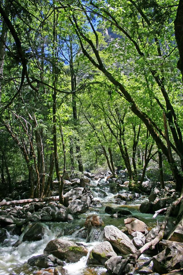 A small river below Bridalveil Fall