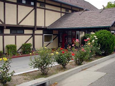 Roses near house