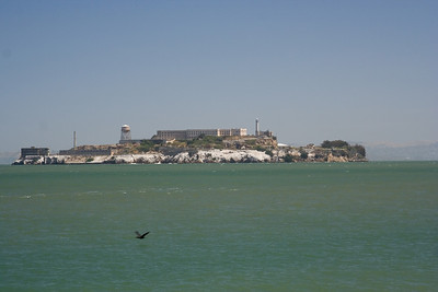 No tour is complete without at least seeing Alcatraz island in the distance.