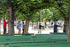 <b>Tai Chi among the trees of the Music Concourse Area in Golden Gate Park</b>