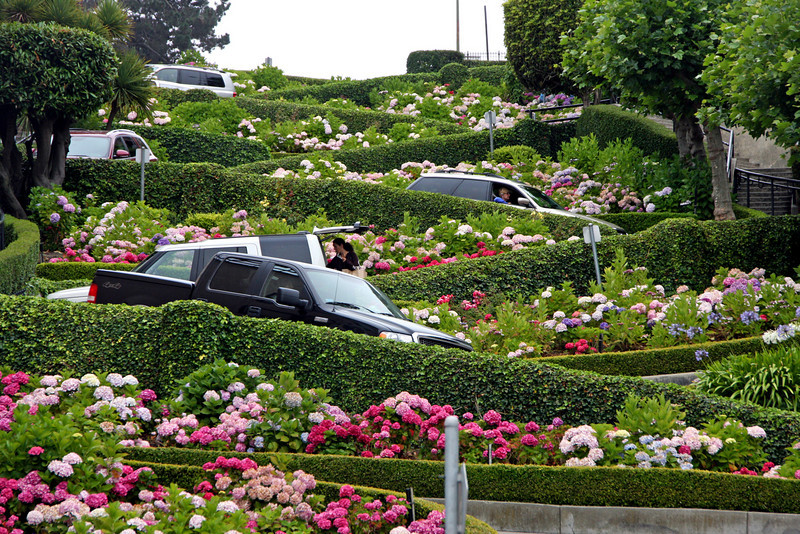 """<b>Lombard Street</b> is best known for the one-way section on Russian Hill between Hyde and Leavenworth Streets in which the roadway has eight sharp turns (or switchbacks) that have earned the street the distinction of being """"the crookedest [most winding] street in the world."""" The switchbacks' design, first suggested by property owner Carl Henry and instituted in 1922 was born out of necessity in order to reduce the hill's natural 27% grade, which was too steep for most vehicles to climb. <br> <br> It is also a serious hazard to pedestrians, who are accustomed to a more reasonable sixteen-degree incline. The crooked section of the street, which is about 1/4 mile (400 m) long, is reserved for one-way traffic traveling east (downhill) and is paved with red bricks. The speed limit in this section is a mere 5 mph (8 km/h).<br> <br> In the 1950s, the street was gardened by a Frenchmen who owned the Bercut meat market.<br> <br> Some of the classiest and most expensive Real Estate in the city, exists on Lombard Street. This Russian Hill neighborhood, somehow possesses stately mansions, condos and townhouses, even with the endless array of tourists pouring down the street every day.<br> <br> Lombard Street is not only """"The Crooked Street."""" It continues in both directions, going all the way east, up Telegraph Hill to Coit Tower and continues west down through the Marina, where it becomes the major conduit to Golden Gate Bridge. A walk in either direction makes for a pleasant hike."""