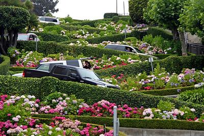 San Francisco City Tour / July 11, 2009