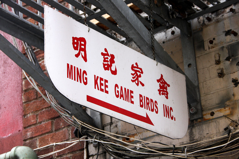 """<b>San Francisco's Chinatown</b> is the largest Chinatown outside of Asia as well as the oldest Chinatown in North America.  In 1848, the first Chinese immigrants - two men and one women - arrived in San Francisco on the American brig, Eagle.  <a href=""""http://www.sanfranciscochinatown.com/history/index.html"""" target=""""_blank""""> <b>Here</a></b> you can find an abridged version of the history of San Francisco's Chinatown."""