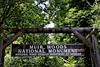 <b>Muir Woods National Monument</b>