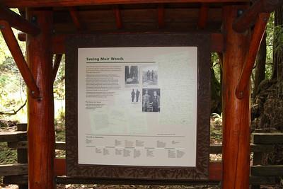 Saving Muir Woods