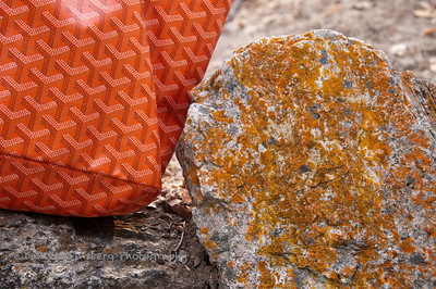 Goyard purse next to orange lichen covered rock in Pinnacles National Park.
