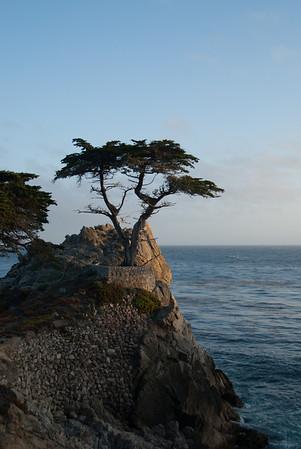 California, 2012 - Part 2