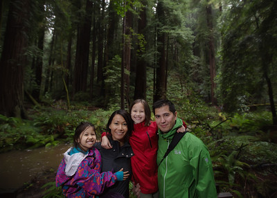 The Dillons at Muir Woods