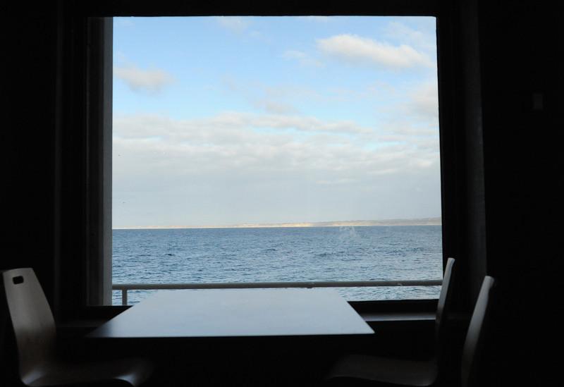 Cafe at Manta Ray Aquarium