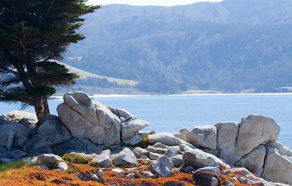 California Central Coast