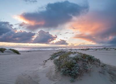 California Coast 02/2011