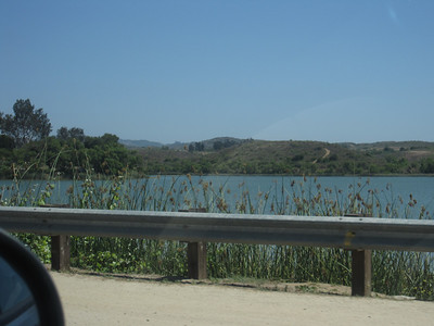 California Mason 2011