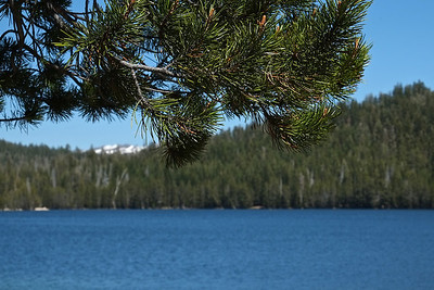 Ebbetts Pass National Scenic Byway