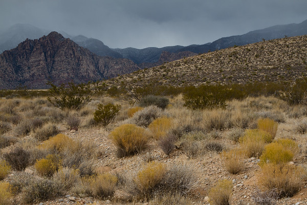 mountains and slanted ground, Red Rock Canyon