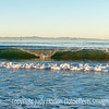 Wave Breaking on Carpinteria Beach