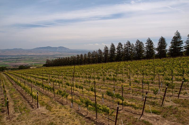 and a view down into Salinas valley at Soledad, CA
