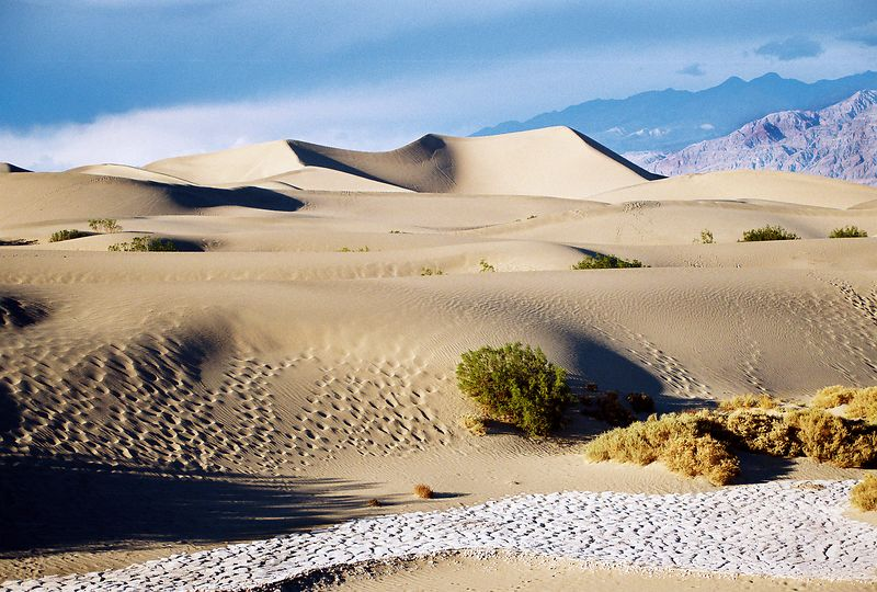 Sand Dunes, Death Valley, CA