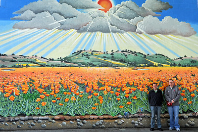 California for the Winter 2011