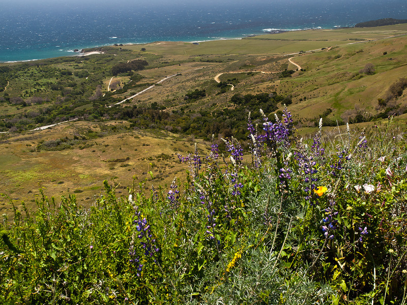 view down through some of the Andrew Molera state park.  The paved road is US 1.
