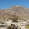 Indianhead Mountaintop - Anza-Borrego Desert State Park   2-14-07