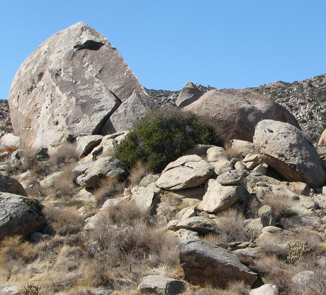 Anza-Borrego Desert State Park   2-14-07