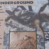 Signage - Life Underground - Anza-Borrego Desert State Park   2-14-07