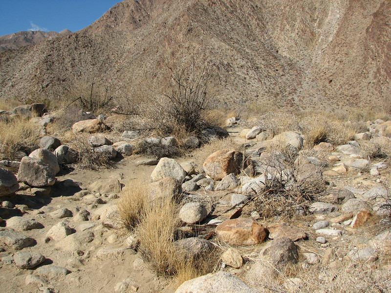 On the Trail - Anza-Borrego Desert State Park   2-14-07