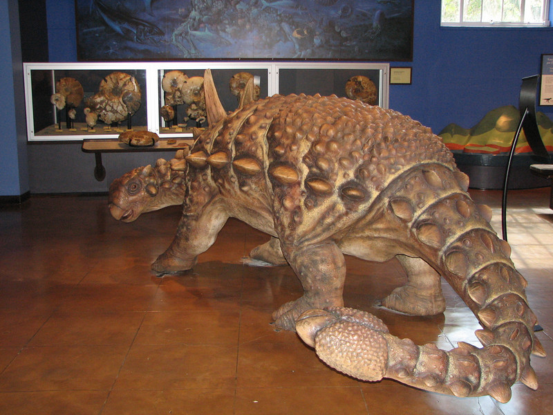 Natural History Museum - Balboa Park - San Diego