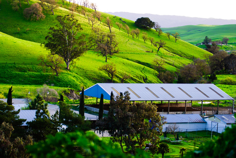 East Bay Horse Ranch