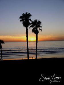 Palms at San Clemente