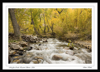 McGee Creek Canyon. Foliage at its almost best.