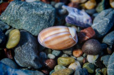 Day 3.4 Shell Beach 395- XE