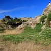 3350_Santa Cruz Island_1-2-14.JPG