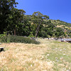 2019-04-17_11_Santa Cruz Is_Prisoners.JPG<br /> Prisoners Landing, Santa Cruz Island, Channel Islands