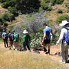 2019-04-17_41_Santa Cruz Is_Prisoners to Pelican Trail.JPG<br /> Prisoners Landing, Santa Cruz Island, Channel Islands