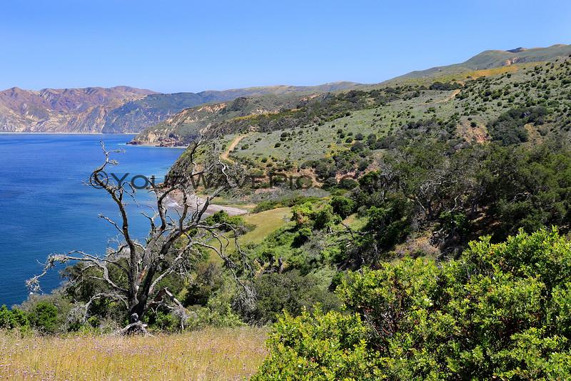 2019-04-17_37_Santa Cruz Is_Prisoners to Pelican Trail.JPG<br /> Prisoners Landing, Santa Cruz Island, Channel Islands