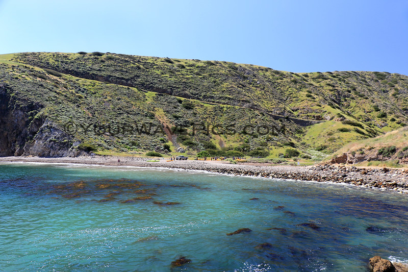2019-04-17_Santa Cruz Is_Scorpion_66.JPG<br /> Scorpion Landing, Santa Cruz Island, Channel Islands