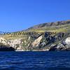2019-04-17_Santa Cruz Is_Scorpion_Potato Harbor_92.JPG<br /> Scorpion Landing, Santa Cruz Island, Channel Islands