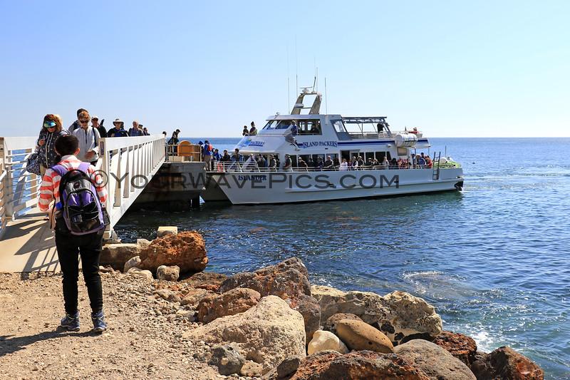 2019-04-17_Santa Cruz Is_Scorpion_Islander_17.JPG<br /> Scorpion Landing, Santa Cruz Island, Channel Islands