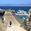 2018-09-16_Channel Is_Santa Rosa Island_Bechers Bay Pier_3.JPG