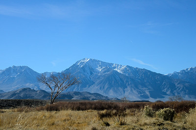 Bishop - California - USA