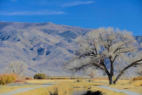California Travel Photography - Bishop - White Mountains