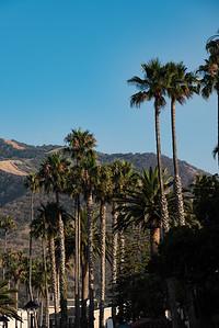 Catalina Island 072518-1486