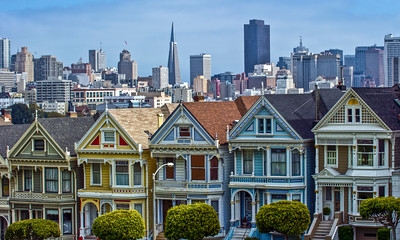 PaintedLadies1-Edit